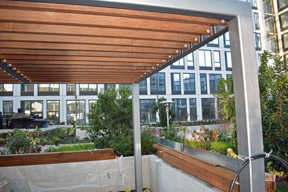 The exterior trellis and deck in the outdoor garden area features Ipe.
