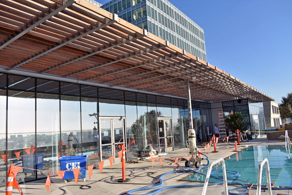The trellis structure lining the pool area features Ipe.