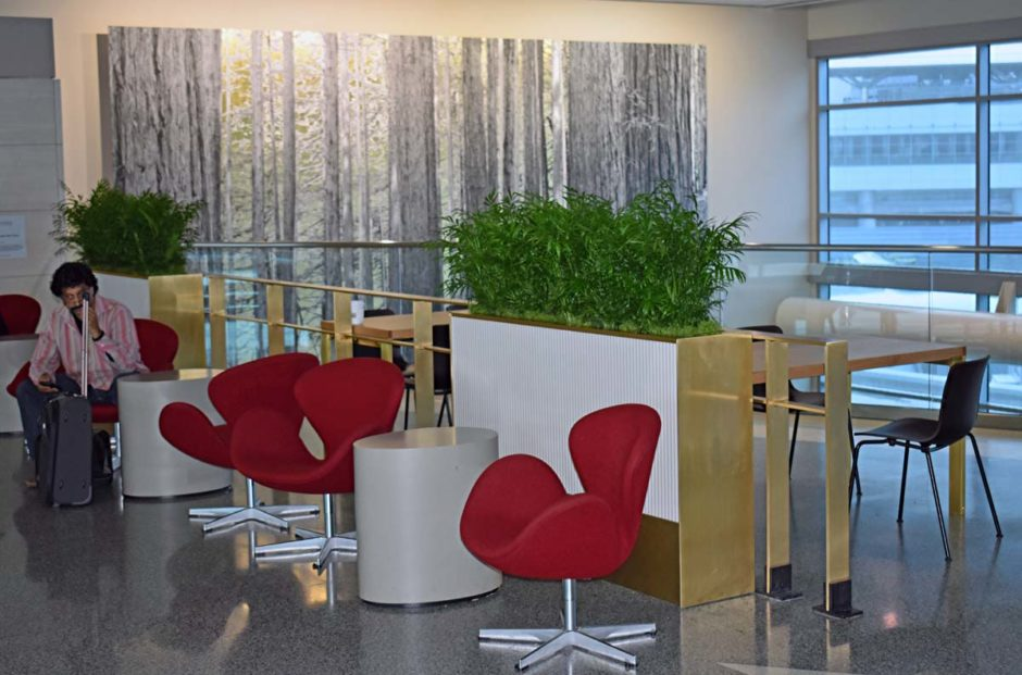 Visitors are enjoying the new seating areas around the planter boxes inside the International Terminal at Concourses A and G.